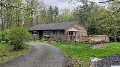 East Chatham NY Single Family Home For Sale: $299,000