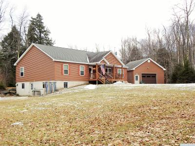 Hunter Single Family Home Accepted Offer: 185 Mink Hollow Road