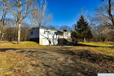 Westerlo NY Single Family Home For Sale: $50,000