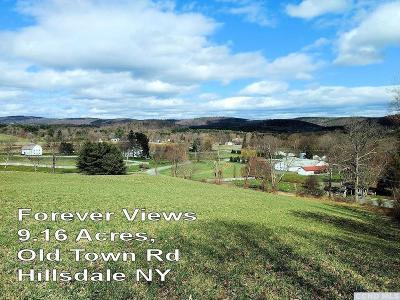 Hillsdale NY Residential Lots & Land For Sale: $59,000