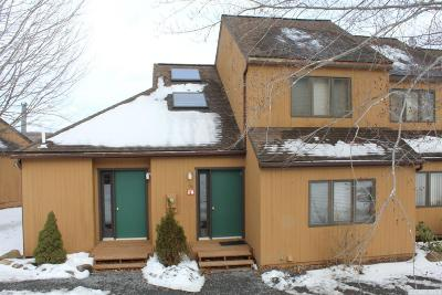 Windham Single Family Home For Sale: 14 Windham Mountain Village