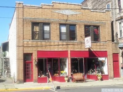 Hudson NY Rental For Rent: $1,000