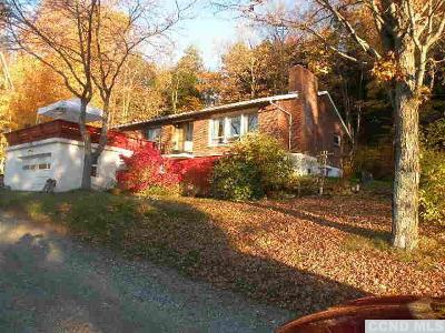 Canaan Single Family Home For Sale: 144 Peaceful Valley Road