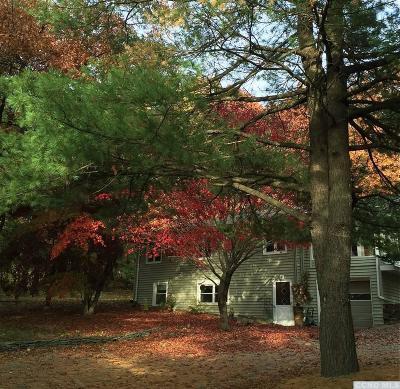 Elizaville NY Single Family Home For Sale: $239,000