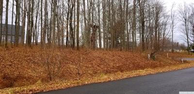 Claverack Residential Lots & Land For Sale: 60 Chestnut Court