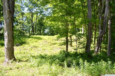 Stanford NY Residential Lots & Land For Sale: $78,000