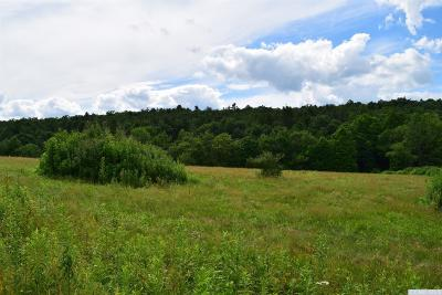 Ancram NY Residential Lots & Land For Sale: $189,900