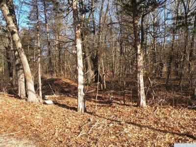 Gallatin NY Residential Lots & Land For Sale: $39,000