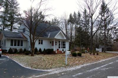 Copake Single Family Home For Sale: 132 Lake Shore Drive