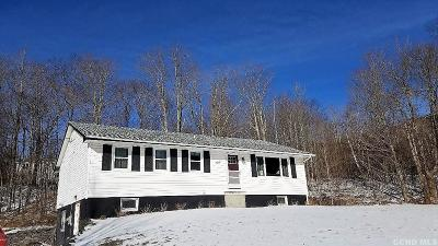 Windham Single Family Home For Sale: 4216 Rt. 23