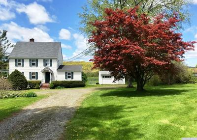 Dutchess County Single Family Home For Sale: 4255 Route 44