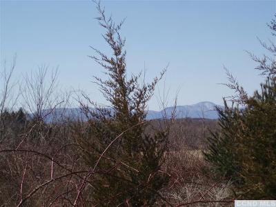 Claverack Residential Lots & Land For Sale: Route 9h