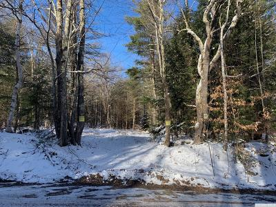 Conesville NY Residential Lots & Land For Sale: $85,000