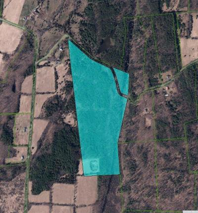 New Baltimore NY Residential Lots & Land For Sale: $125,000