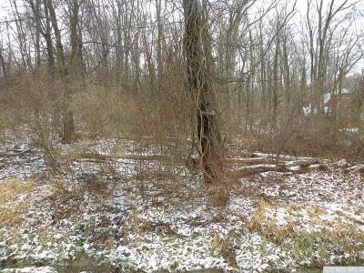 Dover NY Residential Lots & Land For Sale: $35,000