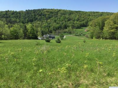 Prattsville Residential Lots & Land For Sale: County Route 10