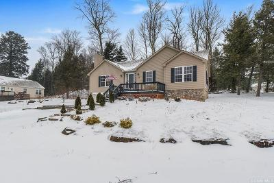 Greene County Single Family Home For Sale: 97 Pleasant View Drive
