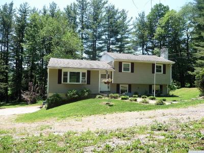 Dutchess County Single Family Home For Sale: 42 David Road