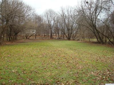 Albany County Residential Lots & Land For Sale: 21 Railroad Ave