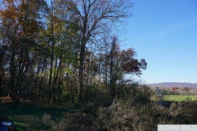 Poughkeepsie NY Residential Lots & Land For Sale: $550,000