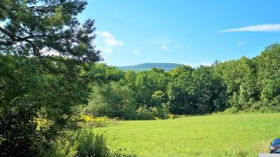 Durham NY Residential Lots & Land For Sale: $120,000