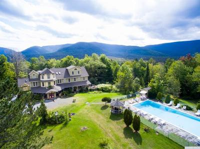 Tannersville NY Single Family Home For Sale: $1,475,000