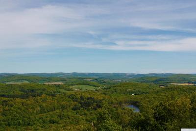 Gallatin NY Residential Lots & Land For Sale: $8,500,000