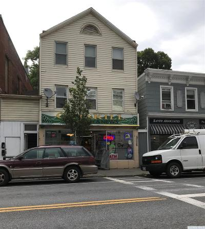 Catskill Multi Family Home For Sale: 342 Main Street