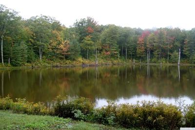 Austerlitz NY Residential Lots & Land For Sale: $494,000