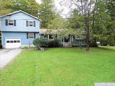 Gallatin NY Single Family Home For Sale: $299,500