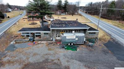 Cairo NY Commercial For Sale: $330,000
