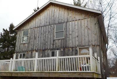 Hudson Single Family Home For Sale: 17 Spring Street