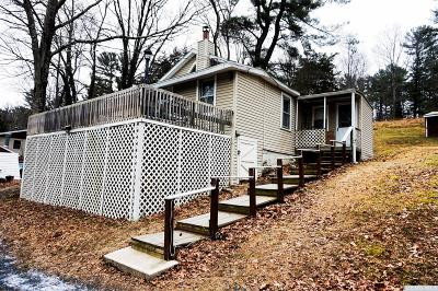 Catskill Single Family Home For Sale: 452 Green Lake