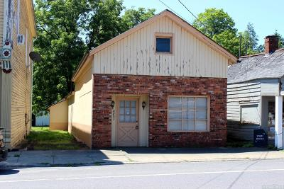 Greenville NY Commercial For Sale: $74,900