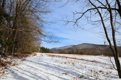 Prattsville Residential Lots & Land For Sale: 69 Alpine View Road