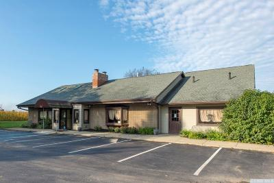 Dutchess County Commercial For Sale: 7685 Route 82