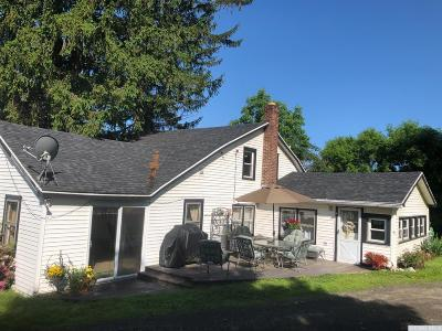 Austerlitz Single Family Home For Sale: 1152 Route 203