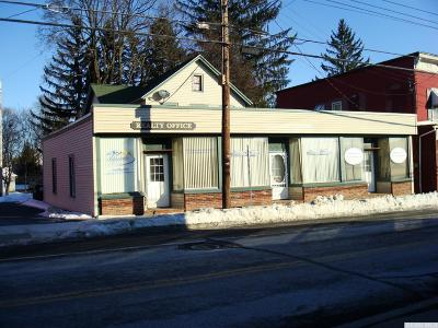 Coeymans NY Commercial For Sale: $149,900