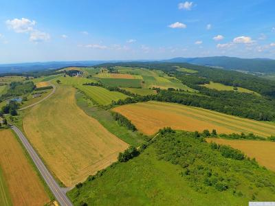 Dutchess County Residential Lots & Land For Sale: 159 Winchell Road