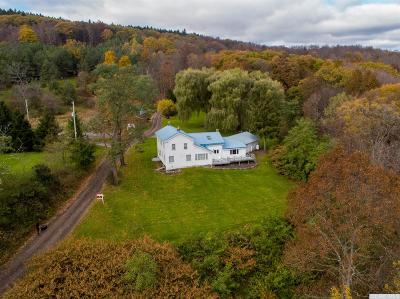 Conesville NY Single Family Home For Sale: $329,000
