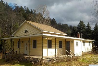 Prattsville Single Family Home For Sale: 11718 Route 23a