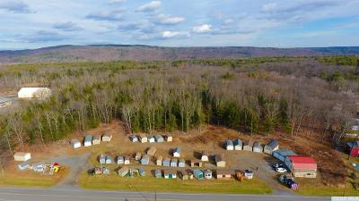 Cairo NY Residential Lots & Land For Sale: $475,000