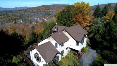 Windham NY Single Family Home For Sale: $649,000