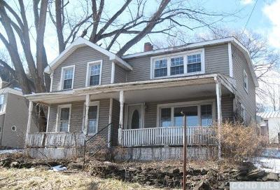 Catskill Single Family Home For Sale: 507 Fyke Road