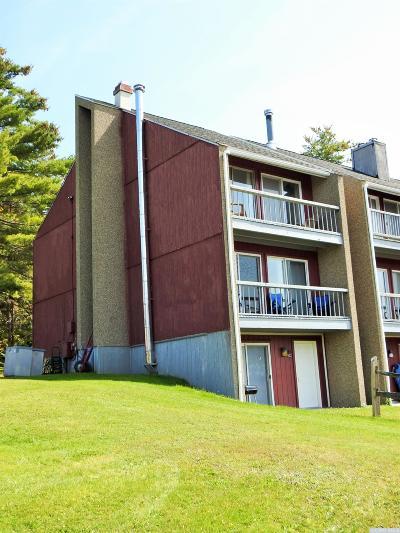 Hunter NY Single Family Home For Sale: $219,000