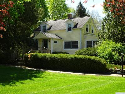 Copake Single Family Home For Sale: 491 North Mountain Road
