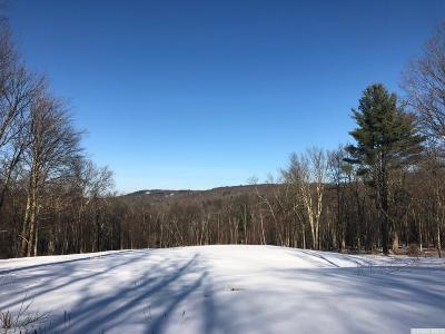 Austerlitz NY Residential Lots & Land For Sale: $169,000