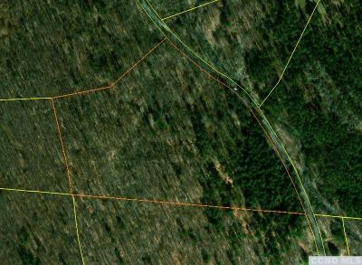 Austerlitz NY Residential Lots & Land For Sale: $199,000
