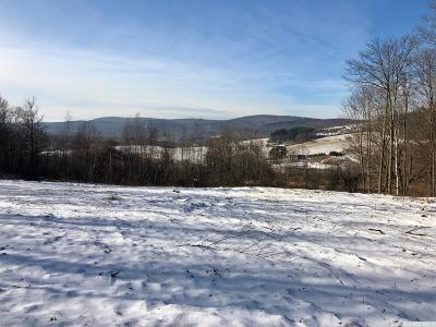 Hillsdale NY Residential Lots & Land For Sale: $249,000
