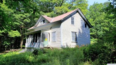 Columbia County Single Family Home For Sale: Upper Cady Road